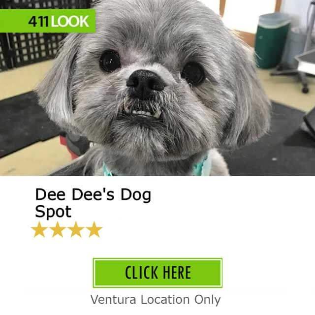 Dee Dee's Dog Spot