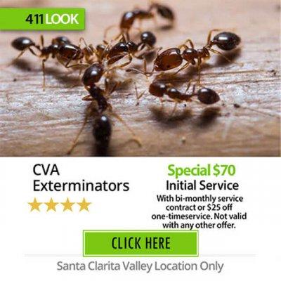 CVA Exterminators